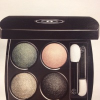 YOU HAVE BEAUTIFUL EYES (with CHANEL new Quadra eyeshadow)
